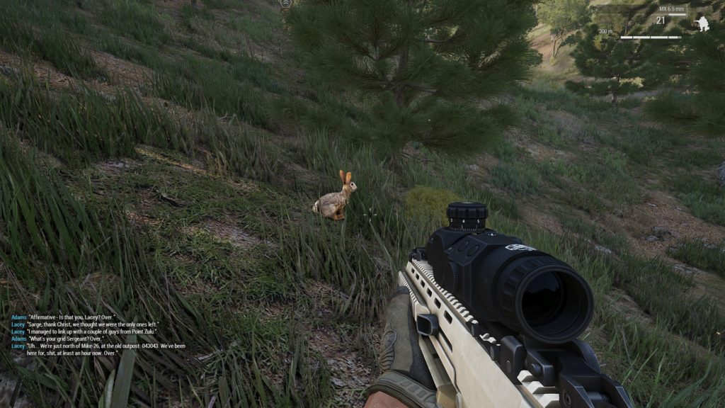 Arma 3: Aiming at a bunny